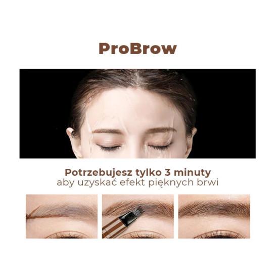 4 point eyebrow pomade
